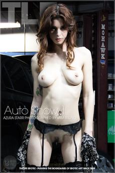 Auto Show 1