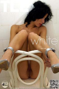 TLE White