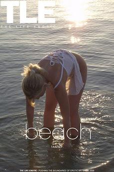 TLE Beach
