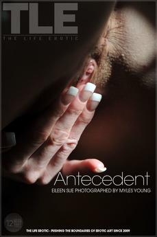 TLE Antecedent