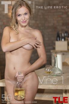 TheLifeErotic - Aislin - Vine 1 by Sandra Shine