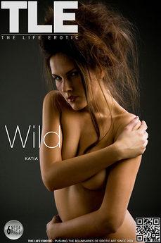 TLE Wild Hair