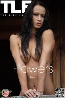 TLE Flowers