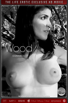 The Life Erotic Movie Wood