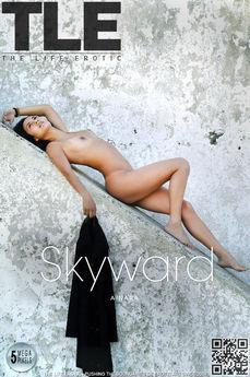 TLE Skyward