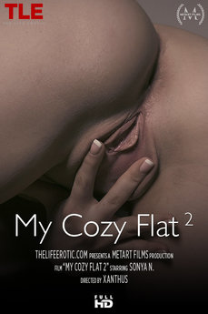 My Cozy Flat 2