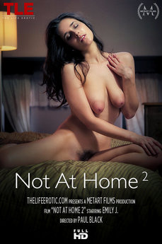 Not At Home 2