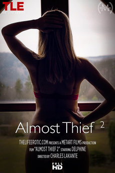 Almost Thief 2