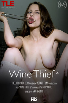 Wine Thief 2