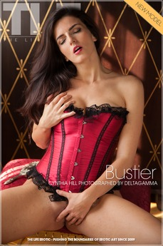Bustier