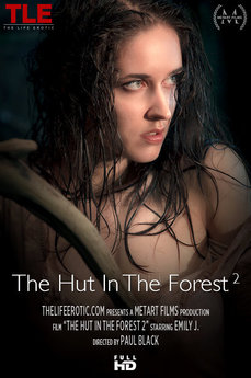 The Hut In The Forest 2