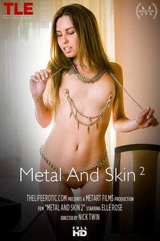 Metal And Skin 2
