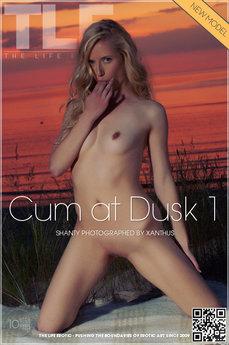 Cum at Dusk 1