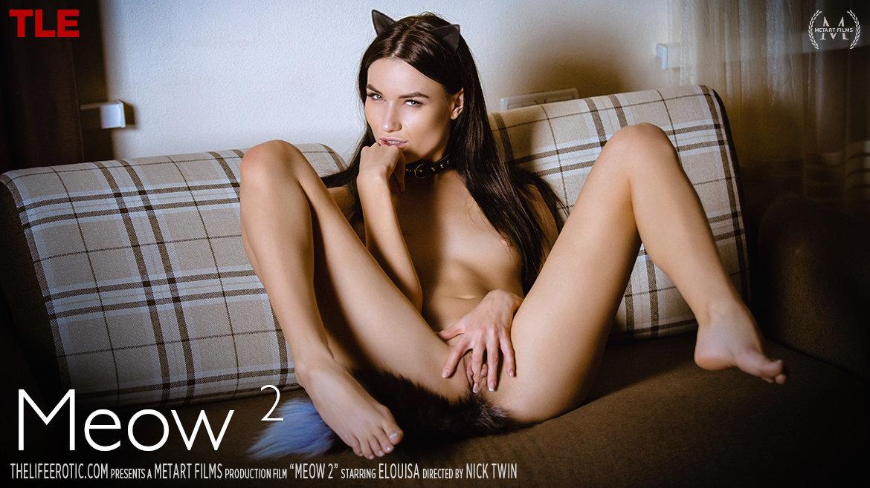 meow 2 (Elouisa)