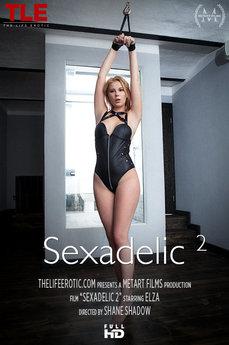 Sexadelic 2