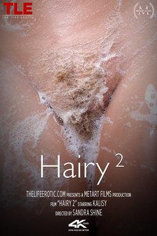 Hairy 2
