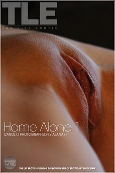 Home Alone 1