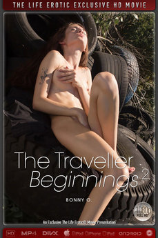 The Traveller - Beginnings 2