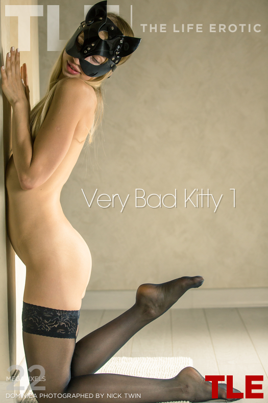 Very Bad Kitty 1
